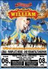 """Circus """"William"""" im Raum Dresden mit seinen weißen Löwen und Tigern auf Tour"""